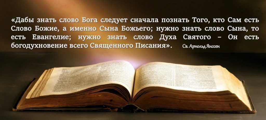 Cв. Арнольд Янссен 3