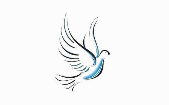 Миссионерская конгрегация Служительниц Святого Духа 4
