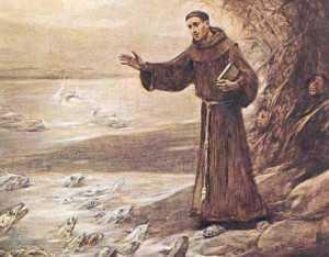 13 июня. Святой Антоний Падуанский, священник и Учитель Церкви. Память 1