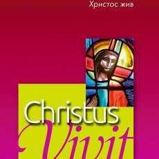 Апостольское обращение Папы Франциска «Christus vivit» 6 глава