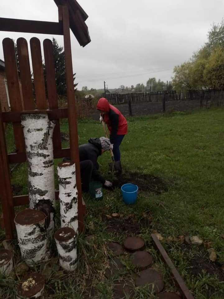 Саженцы из «Междуреченского лесхоза» добрались и до нашего прихода в селе Колыон! 5