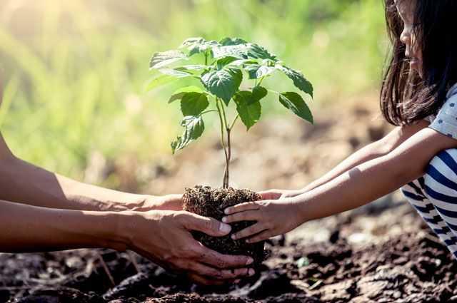 5 июня Всемирный день окружающей среды 1